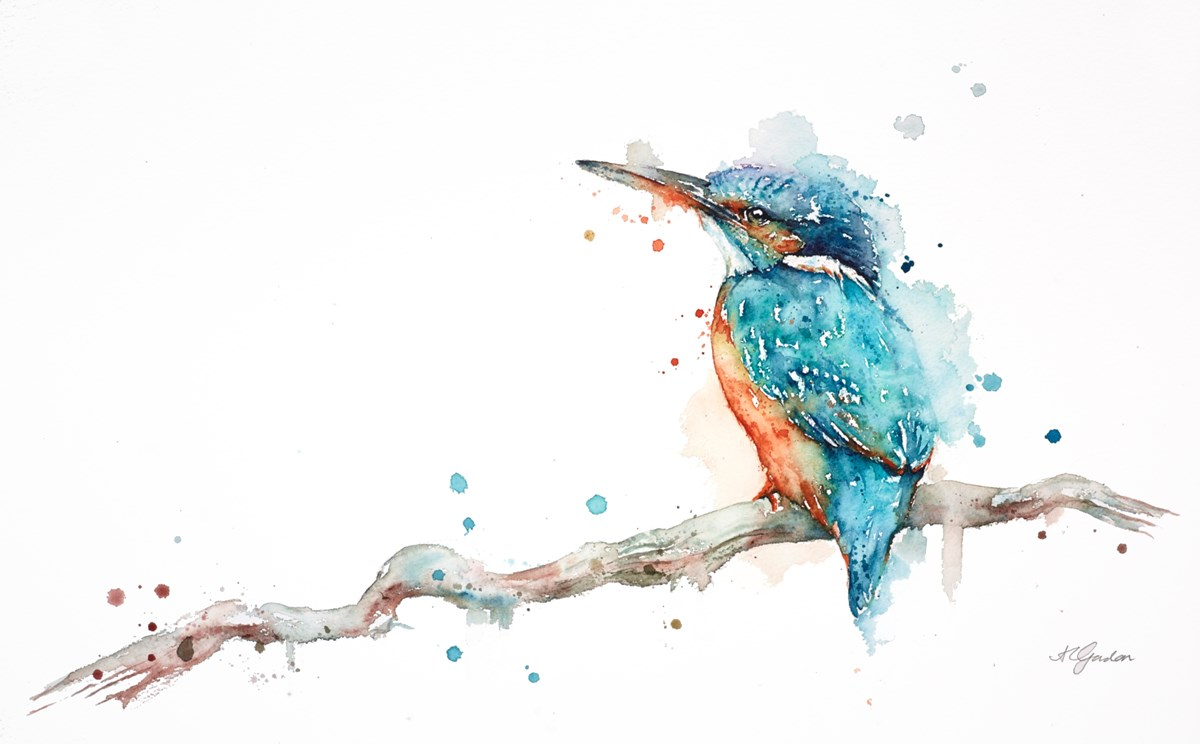 Perched Kingfisher by amanda gordon -  sized 22x13 inches. Available from Whitewall Galleries